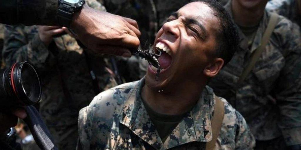 Cobra Gold: i marines angiano serpenti